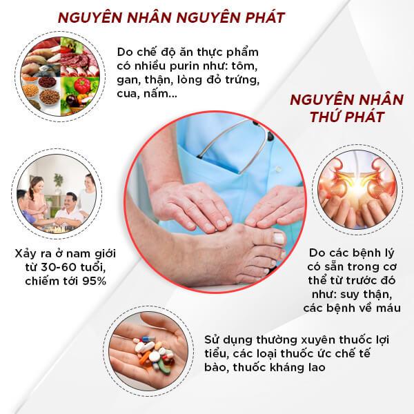 Những nguyên nhân nào gây ra bệnh gout ?