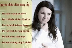 Viêm họng cấp nguyên nhân do đâu?