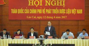 Thực trạng nguồn dược liệu Việt Nam