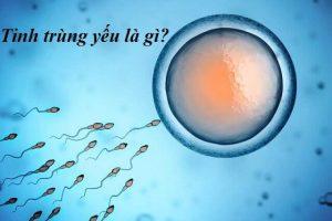 Bệnh tinh trùng yếu là gì, có khả năng thụ thai không?